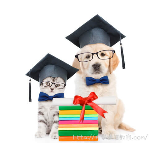 司書資格を取得して卒業