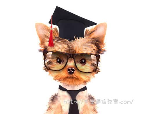 ガリ勉して主席で卒業