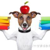 北海道で司書講習・司書補講習を実施している大学一覧