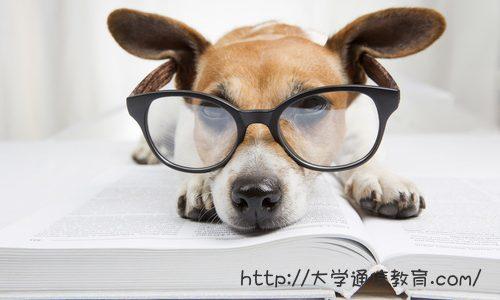 【東京】司書講習・司書補講習を実施している大学 | 夏期司書講習会