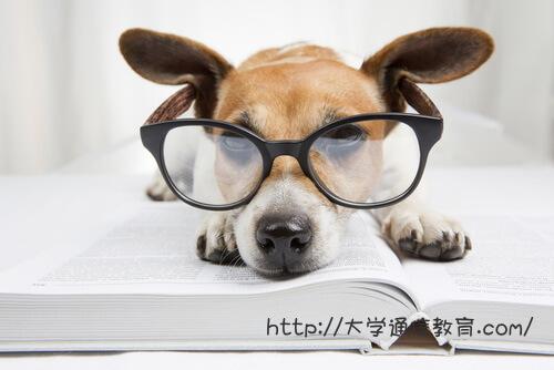 東京都内の司書講習・司書補講習を実施する大学