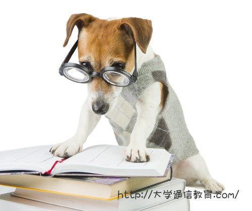 神奈川で司書講習を実施しているのはどこ?