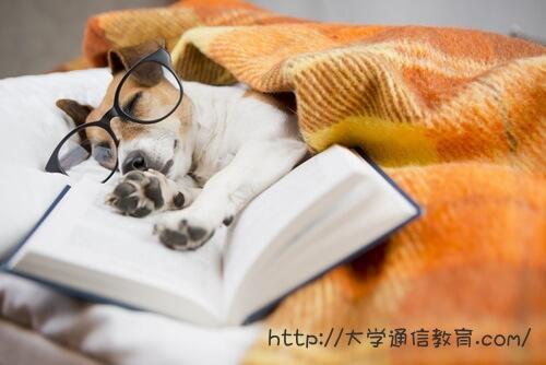 試験勉強疲れ